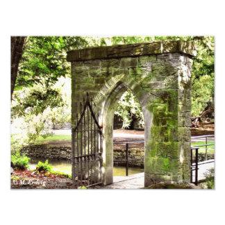 Enchanted Gate Photo