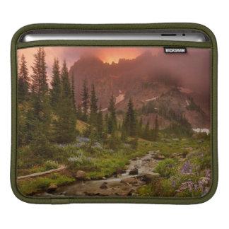 Enchanted Meadows iPad Sleeve