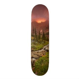 Enchanted Meadows Skateboard