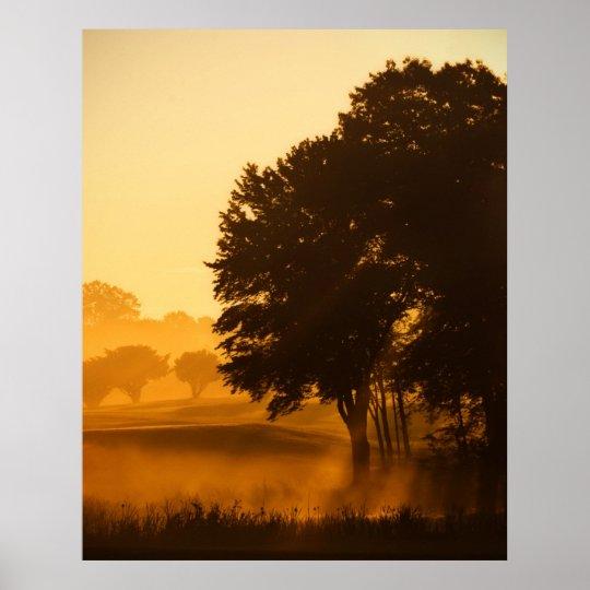Enchanted Morning Poster