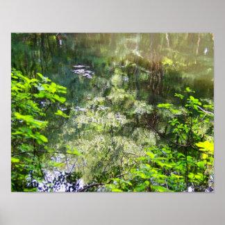 Enchanted Reflection Poster
