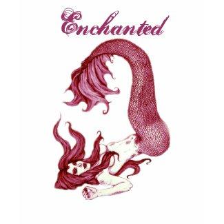 *Enchanted* shirt