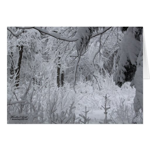 Enchanted Winter Forest Greeting Card
