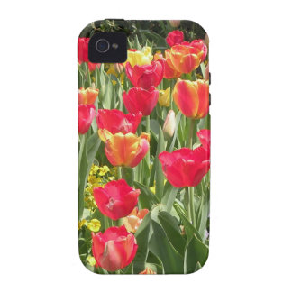 Enchanting Tulips iPhone 4 Case-Mate Tough Case Case-Mate iPhone 4 Covers