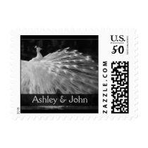 enchanting white peacock postage