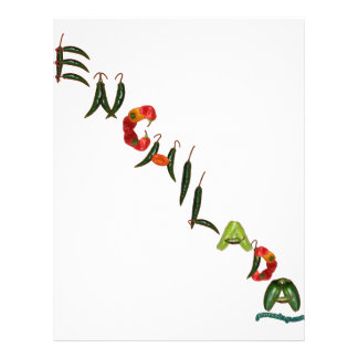 Enchilada Chili Peppers Flyer