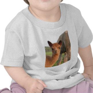 enchufe 3 JPG Camisetas