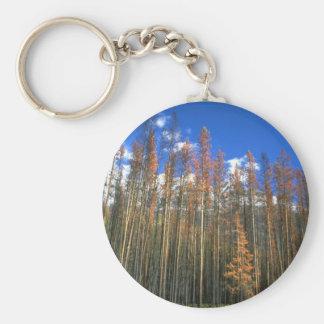 Encienda el bosque chamuscado en el parque naciona llavero personalizado