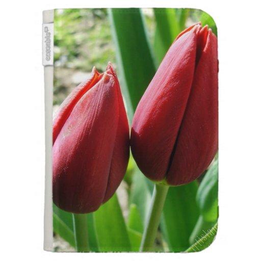 Encienda la caja con las fotos de la flor