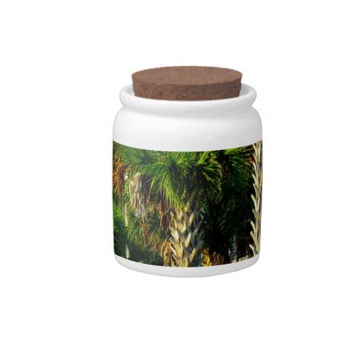 Encima de alto en la isla de palmas tarro de cerámica para dulces
