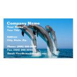 Encima de delfínes ascendentes ascendentes tarjeta de visita
