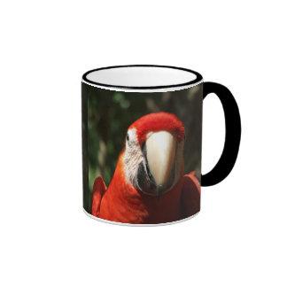 Encima de Macaw cercano y personal del escarlata Taza De Café