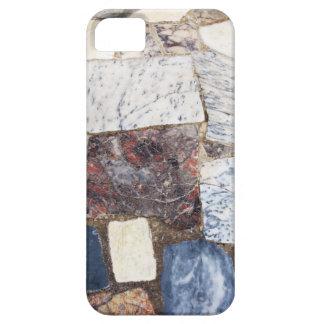 Encimera de Pompeya iPhone 5 Carcasa