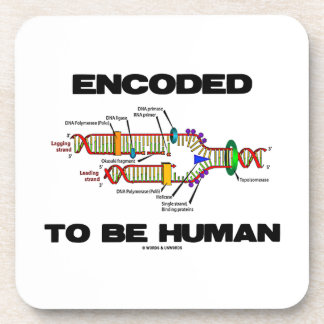 Encoded To Be Human (DNA Replication) Coaster