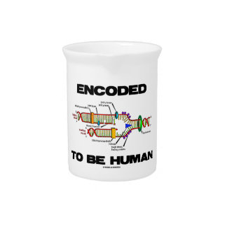 Encoded To Be Human (DNA Replication) Drink Pitchers