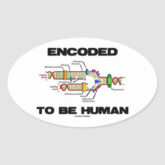 Encoded To Be Human (DNA Replication) Oval Sticker