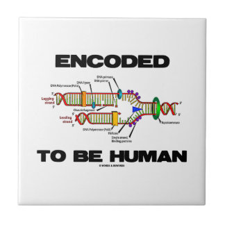 Encoded To Be Human (DNA Replication) Tile
