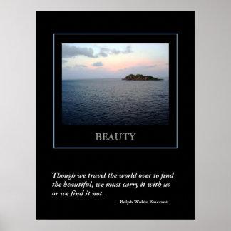 Encontrar el poster de la belleza