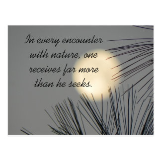 Encounters Nature Postcard