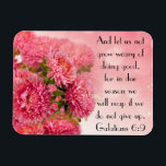 "Encouragement bible verse Galatians 6:9 Magnet<br><div class=""desc"">Pretty pink flowers inspired with bible verse &quot;And let us not grow weary of doing good,  for in due time we will reap if we do not give up.  Galatians 6:9&quot;</div>"