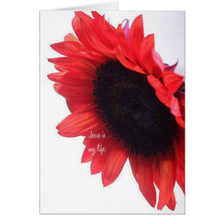 Encouragement for sister in Christ/greeting card