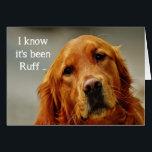 "Encouragement/ Get Well Cute Golden Retriever Dog Card<br><div class=""desc"">Encouragement or Get Well with a Sad but Cute Golden Retriever Dog</div>"