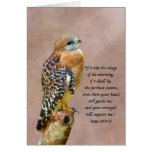 Encouragement, Get Well, Spiritual, Hawk On A Limb Card at Zazzle
