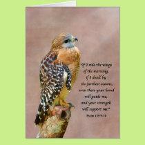 Encouragement, Get Well, Spiritual, Hawk on a Limb Card