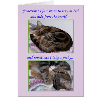 Encouragement Greeting Card, Photos of a Cat Card