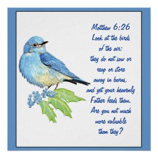 Encouraging Bible Scripture Matthew Bluebird Poster
