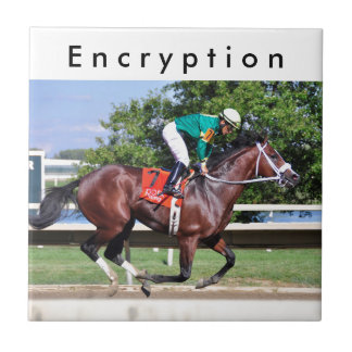 Encryption - Paco Lopez Ceramic Tile
