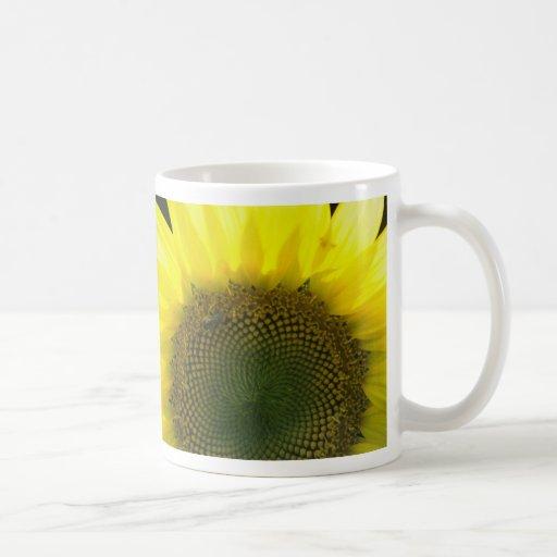 Encuentre la abeja 1 taza básica blanca