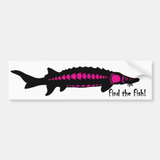 encuentre los pescados, PINK2 Pegatina De Parachoque