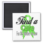 Encuentre una curación para mi suegra - linfoma iman para frigorífico