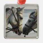 Encuentro de dos caballos ornamento de reyes magos
