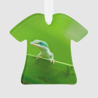 Encuentro verde del lagarto de Anole