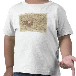 Encuestas sobre geográficas Estados Unidos Camisetas