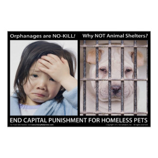End Capital Punishment for Homeless Pets (small) Poster