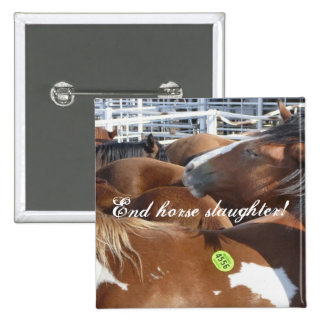 End horse slaughter! pin