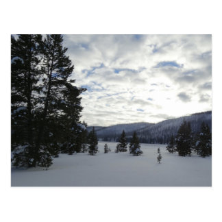 End of a Snowy Day in Yellowstone National Park Postcard