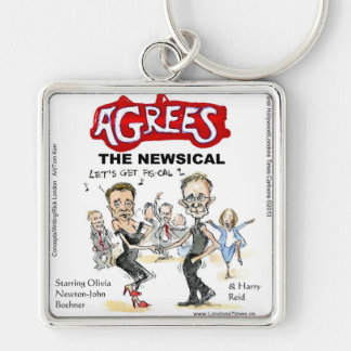 End Of Fiscal Cliff Funny Gifts Cards & Tees Key Chain