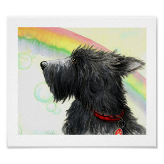 End of the rainbow Scottie Poster