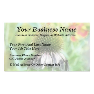 End Of The Season - Coneflower Close Up Double-Sided Standard Business Cards (Pack Of 100)