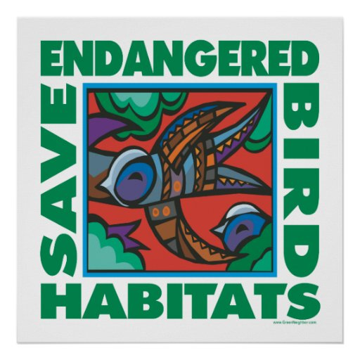Endangered Birds Posters