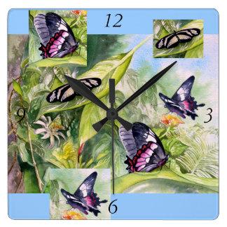 Endangered Brazilian Butterfly Clock