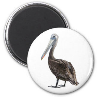 Endangered Brown Pellican (protected species) 2 Inch Round Magnet