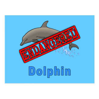 Endangered Dolphin Products Postcard