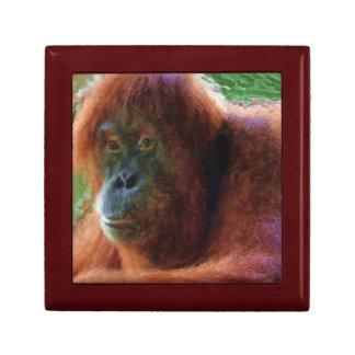 Endangered Female Orangutan Primate Portrait Jewelry Box