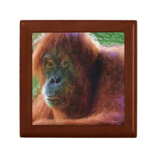 Endangered Female Orangutan Primate Portrait Keepsake Box