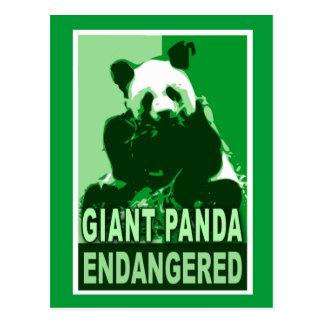 Endangered Giant Panda Pop Art Tshirts Postcard